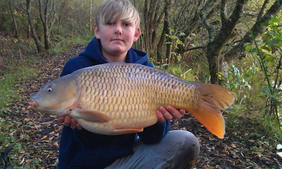 18lb 8oz Common Carp